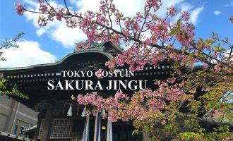 【東京御朱印、ここがすごい!】桜神宮(桜新町)の春季限定御朱印
